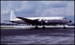 photo of Douglas DC-6BF N1VX