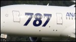 photo of Boeing 787-881 JA801A